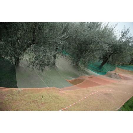 Rete 33gr Tagl. C/bordino 10x10/verde